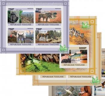 15-02-2011-fauna-code-tg11101a-tg11120b.jpg