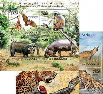 28-09-2011-the-ecosystems-of-africa-i-code-tg11401a-tg11413b.jpg