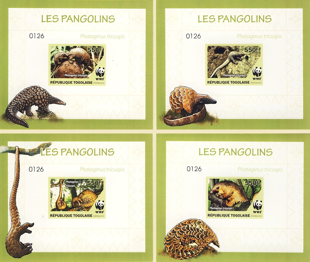 WWF Phataginus tricuspisDe Luxe sheet with single stamp 4 - Issue of Togo postage stamps
