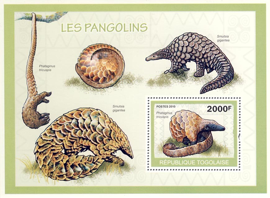 Pangolins  Phataginus tricuspis?タᆵ - Issue of Togo postage stamps