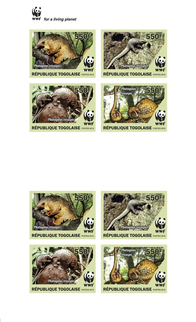 Pngolins Phataginus tricuspis?タᆵ (Imperf.) - Issue of Togo postage stamps