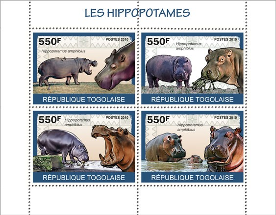 Hippos, (Hippopotamus amphibious) - Issue of Togo postage stamps
