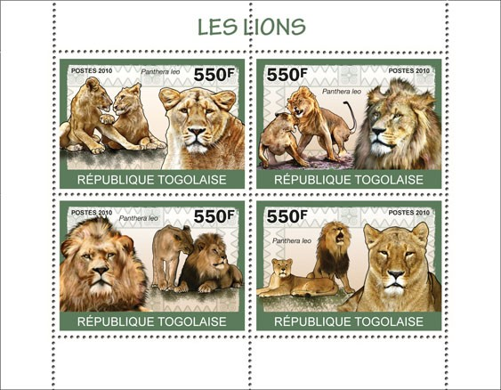 Lions, ( Panthera leo ) - Issue of Togo postage stamps
