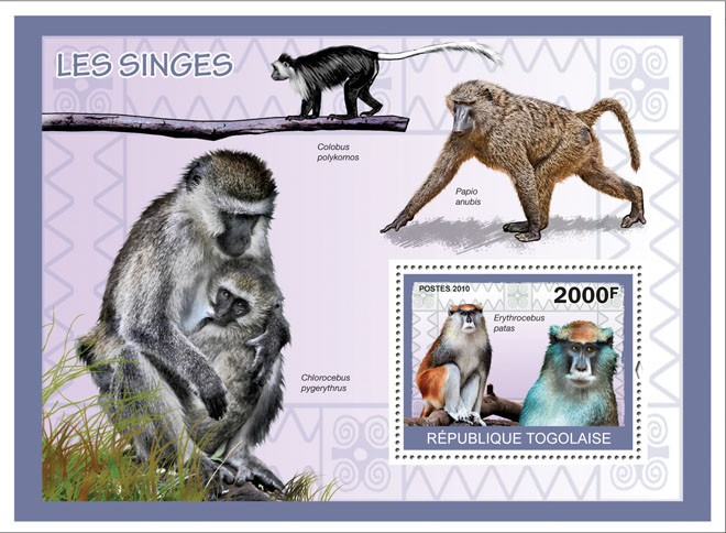 Monkeys, ( Erythrocebus patas ) - Issue of Togo postage stamps