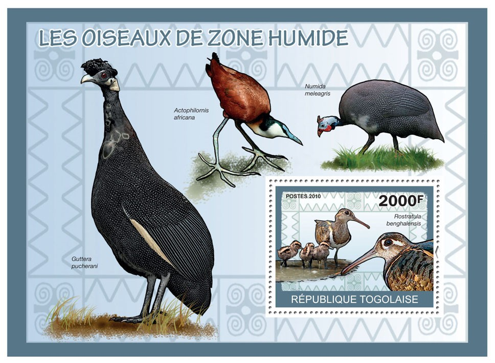 Wetland Birds, (Rostratula banghslensis) - Issue of Togo postage stamps
