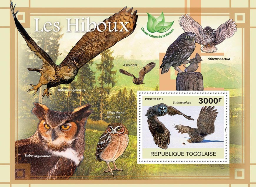Owls. - Issue of Togo postage stamps