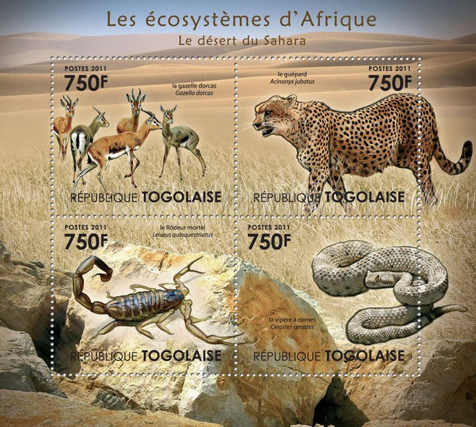 Fauna of the Sahara Desert. - Issue of Togo postage stamps