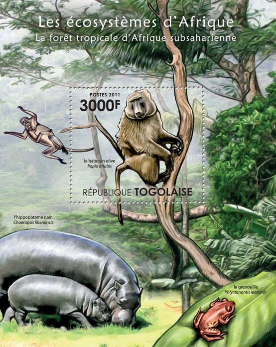 Animals of the Tropical Forest of Sub-Sahara. - Issue of Togo postage stamps