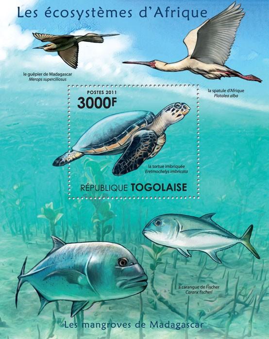 Fauna of Mangroves Forests of Madagascar. . - Issue of Togo postage stamps