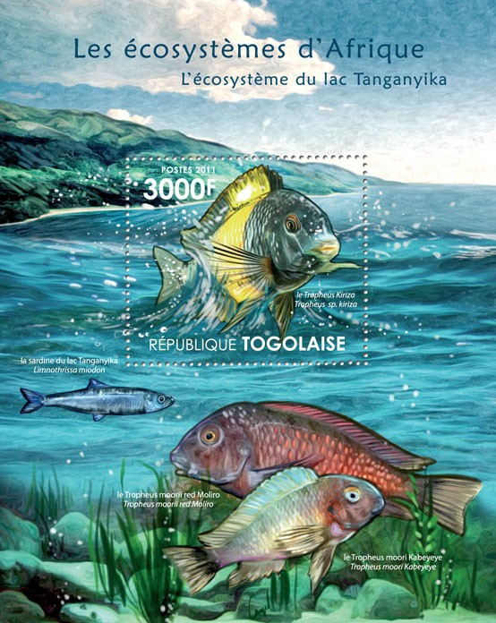 Ecosystem of Tanganyika Lake. - Issue of Togo postage stamps