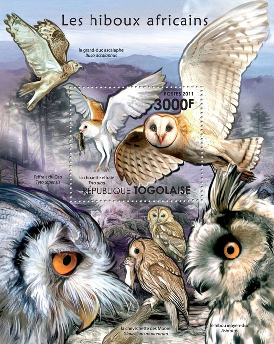 African Owls. - Issue of Togo postage stamps