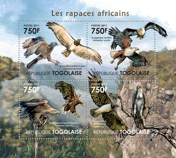 Birds of Prey of Africa. - Issue of Togo postage stamps