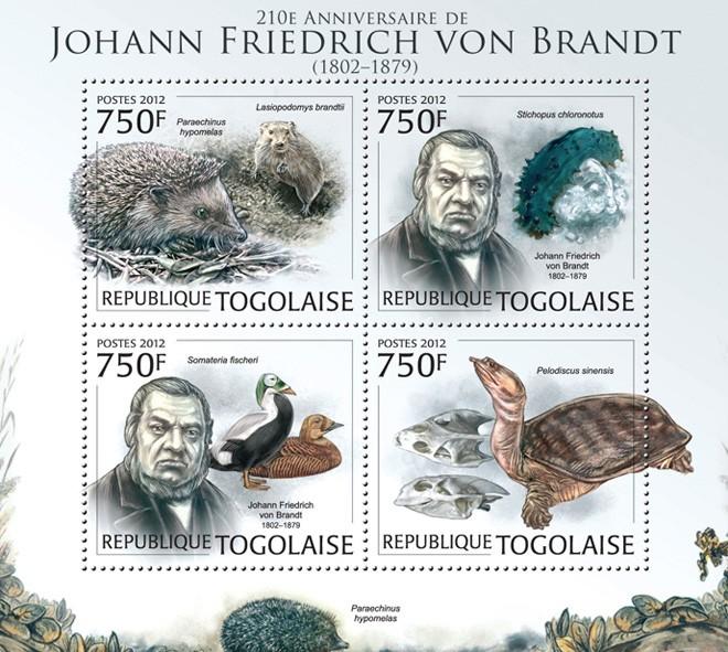 Johan Friedrich von Brandt (1802-1879) (Paraechinus hypomelas, lasiopodomys brandtii, stichopus chloronotus, somateria fischeri, pelodiscus sinensis) - Issue of Togo postage stamps
