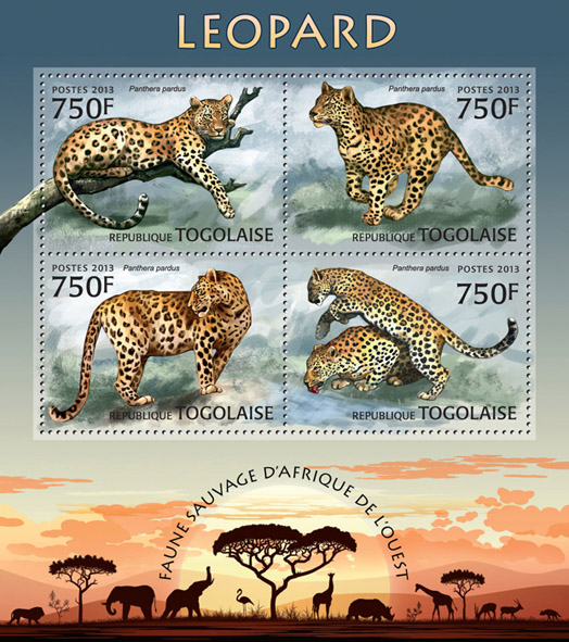 Leopards - Issue of Togo postage stamps