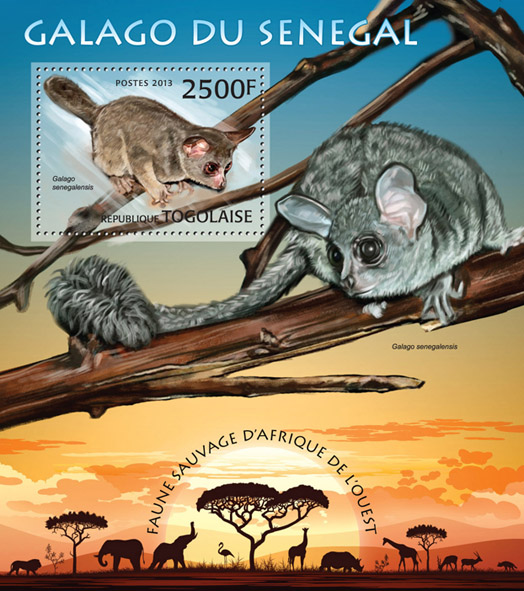 Senegal Galago - Issue of Togo postage stamps