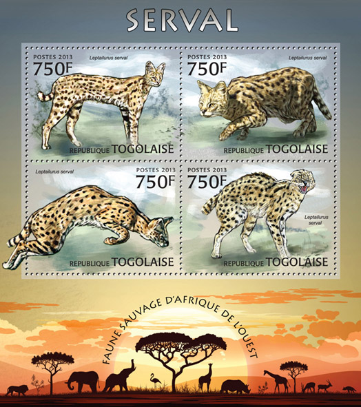 Serval - Issue of Togo postage stamps