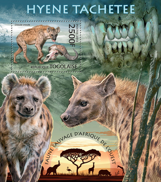 Hyena  - Issue of Togo postage stamps