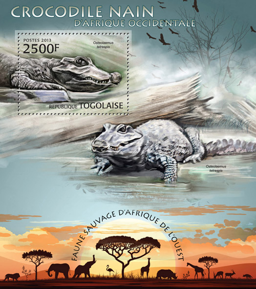 Crocodile - Issue of Togo postage stamps