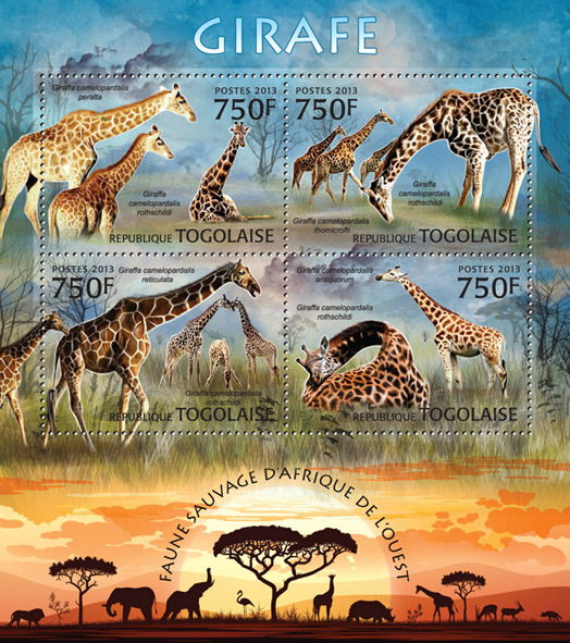 Giraffe - Issue of Togo postage stamps