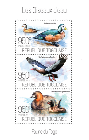 Waterbirds - Issue of Togo postage stamps