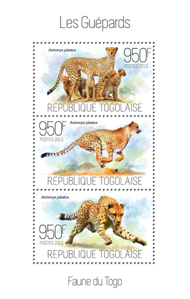 Cheetahs - Issue of Togo postage stamps