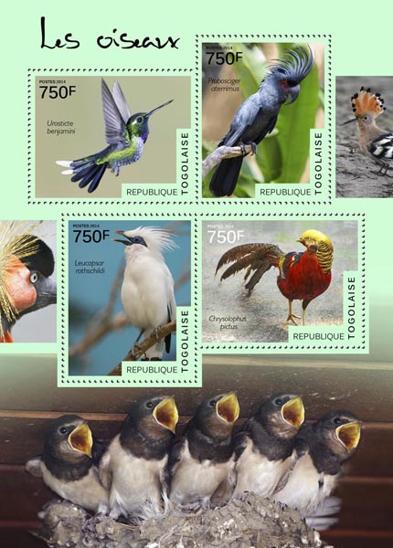 Birds - Issue of Togo postage stamps