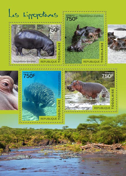Hippopotamuses - Issue of Togo postage stamps