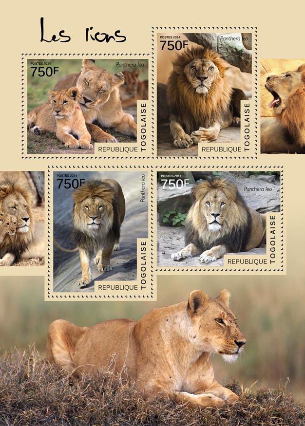 Lions - Issue of Togo postage stamps
