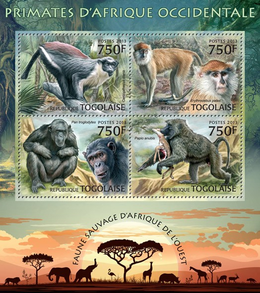 Primats  - Issue of Togo postage stamps