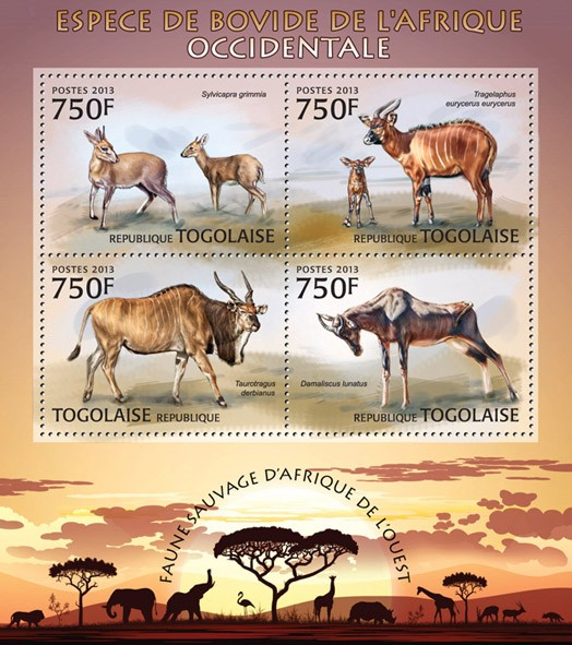 Bovid species - Issue of Togo postage stamps