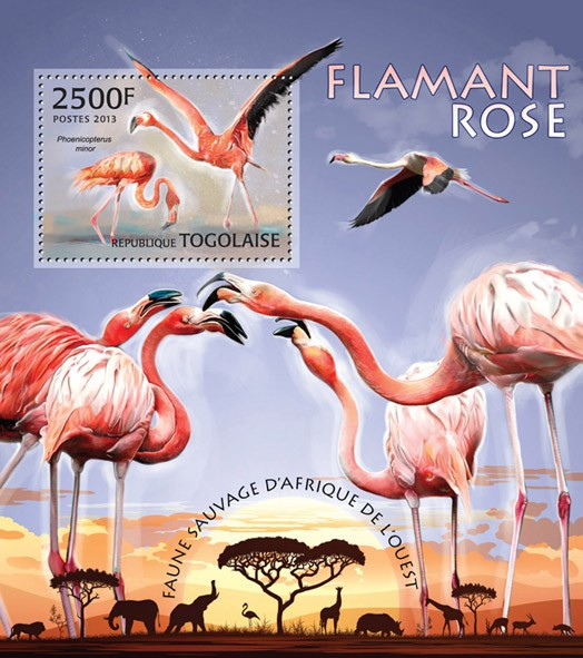 Flamingos - Issue of Togo postage stamps