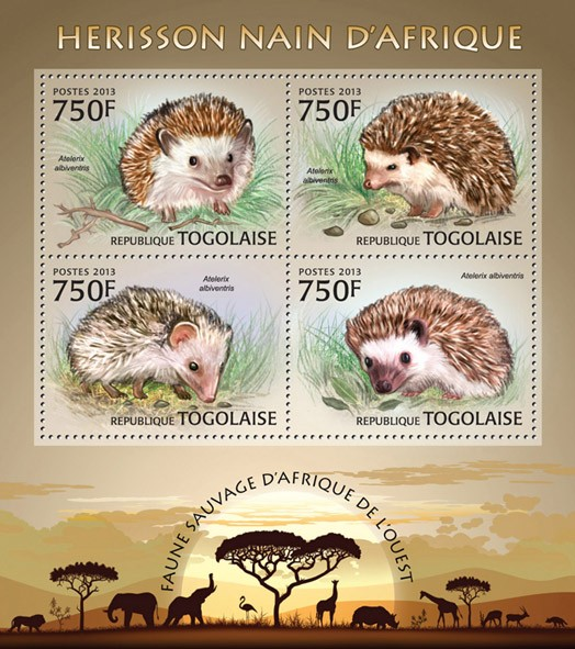 Dwarf hedgehog - Issue of Togo postage stamps