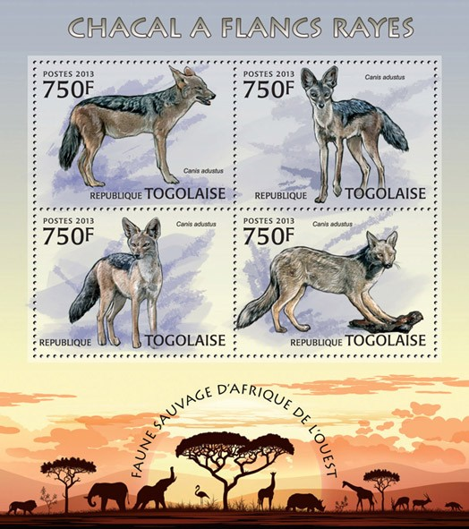 Jackal - Issue of Togo postage stamps