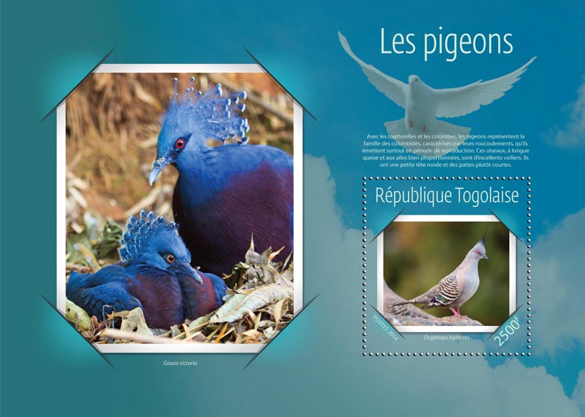Pigeons - Issue of Togo postage stamps