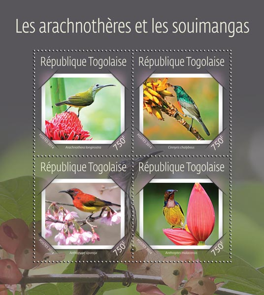 Sunbirds and spiderhunters - Issue of Togo postage stamps