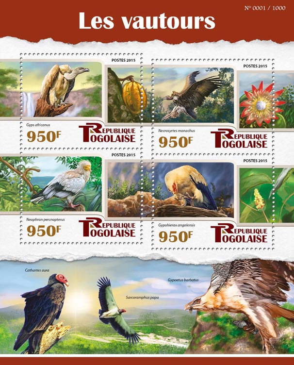 Vultures - Issue of Togo postage stamps
