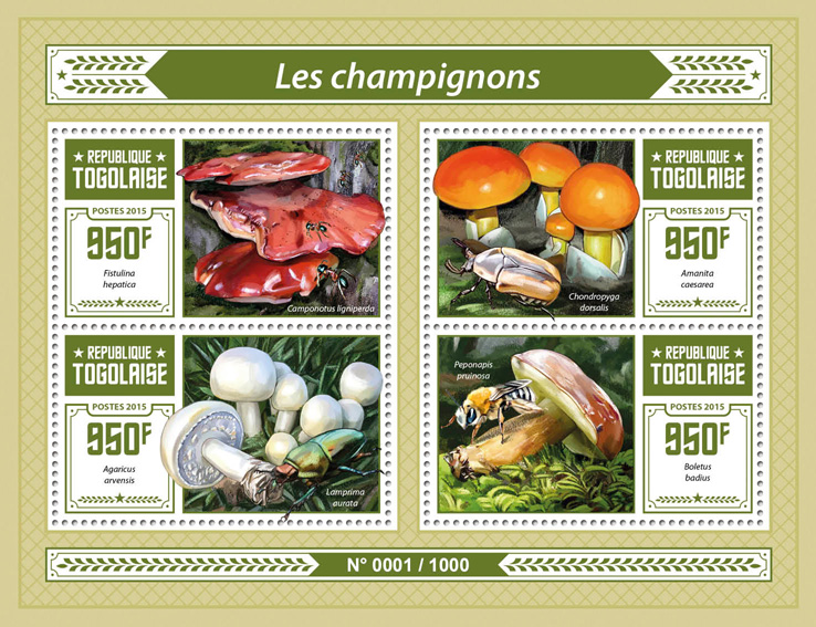 Mushrooms - Issue of Togo postage stamps
