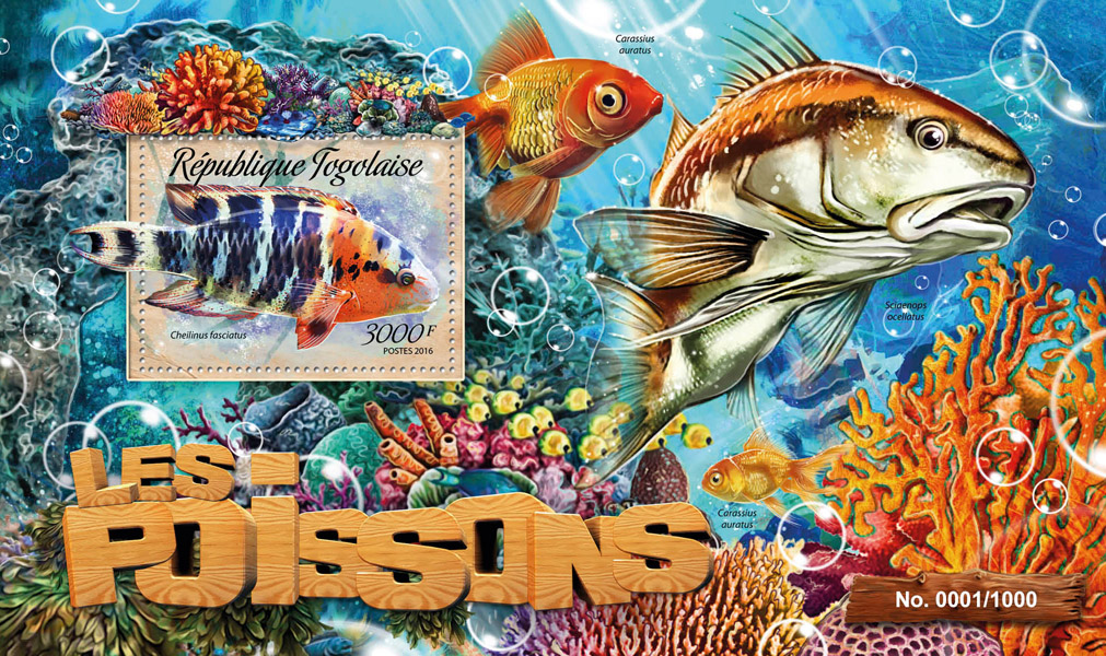 Fish - Issue of Togo postage stamps