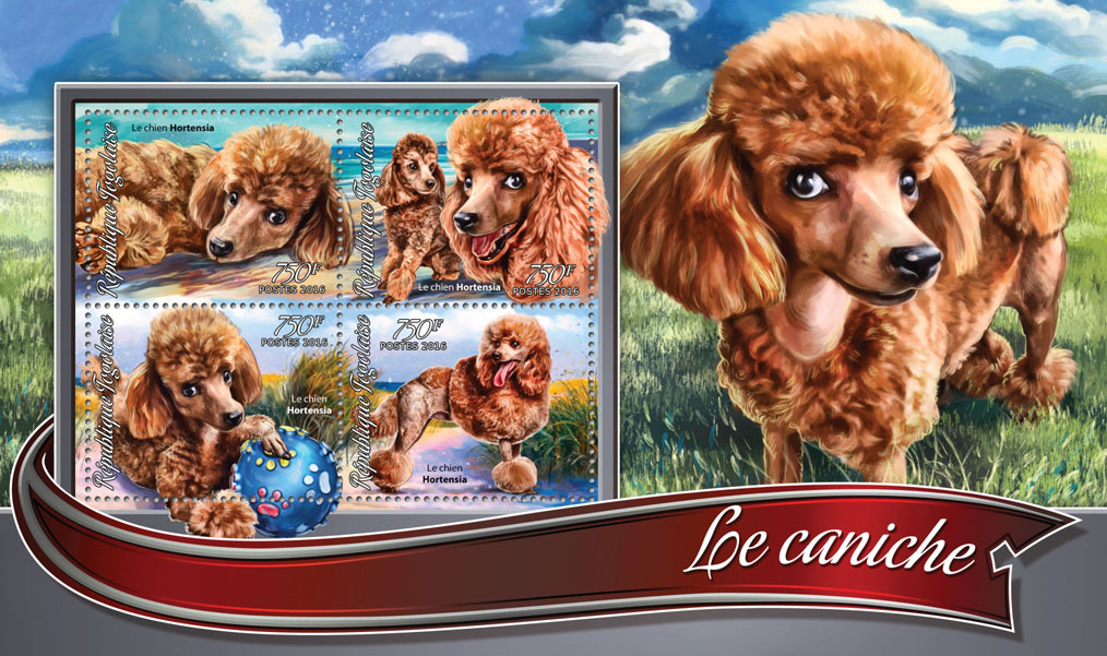 Poodle - Issue of Togo postage stamps