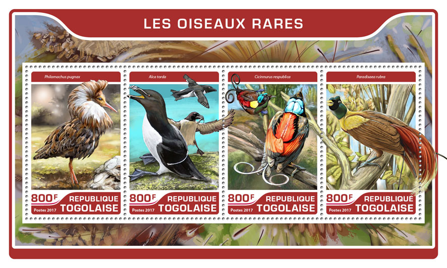 Rare birds - Issue of Togo postage stamps