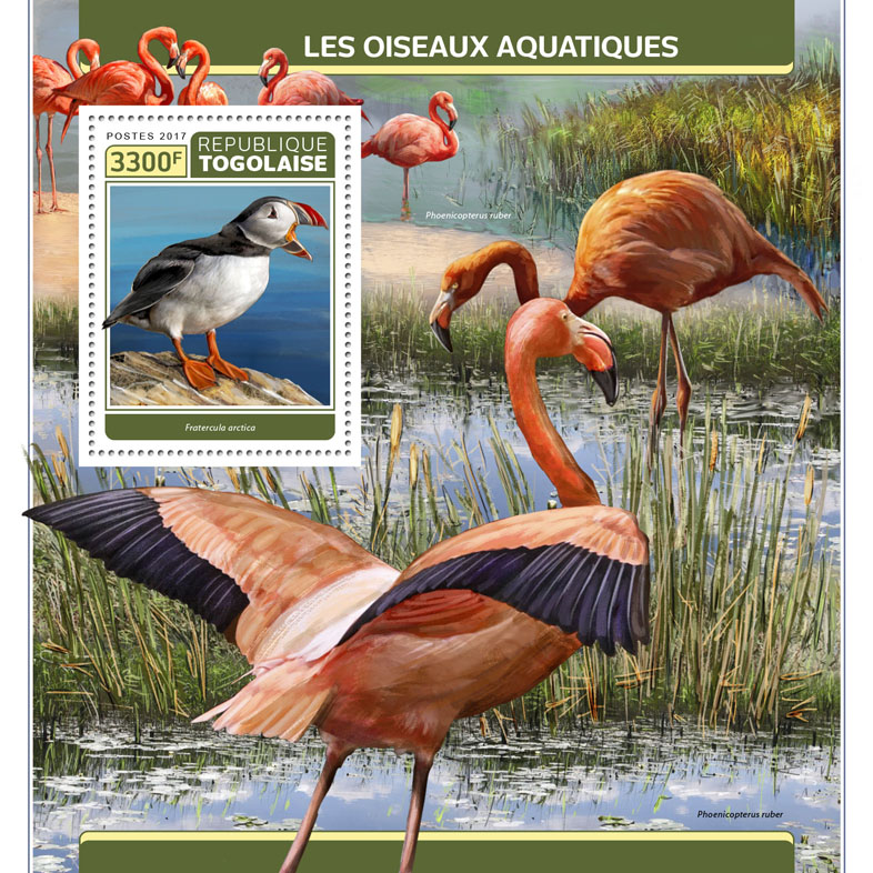 Water birds - Issue of Togo postage stamps