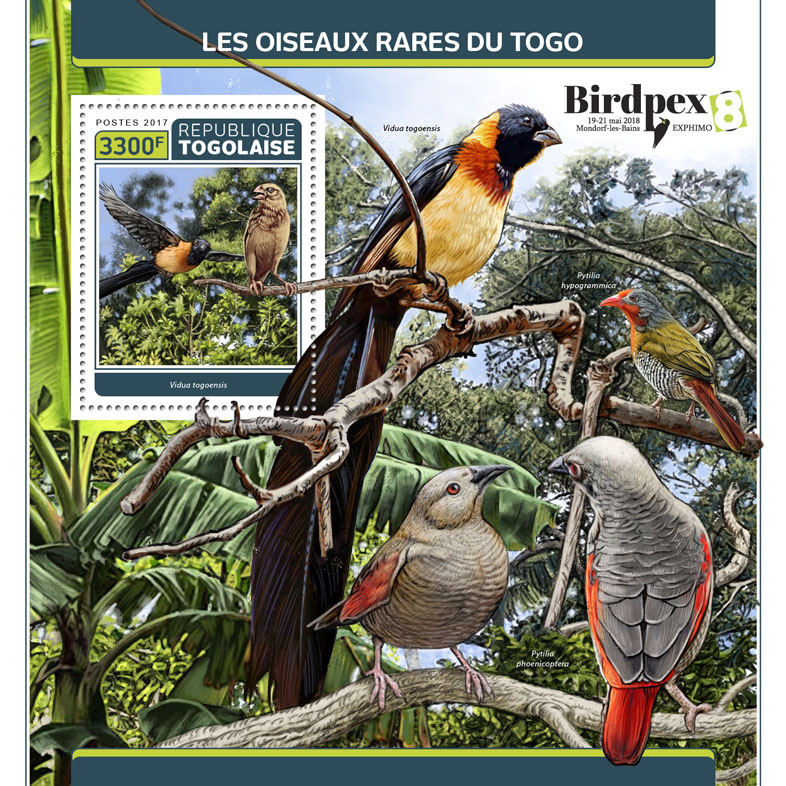 Rare birds of Togo - Issue of Togo postage stamps