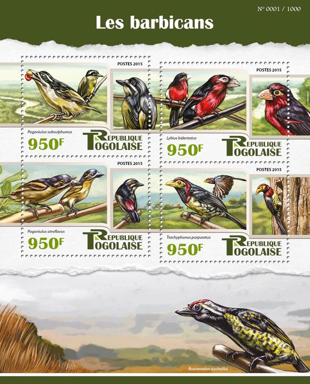 Barbets - Issue of Togo postage stamps