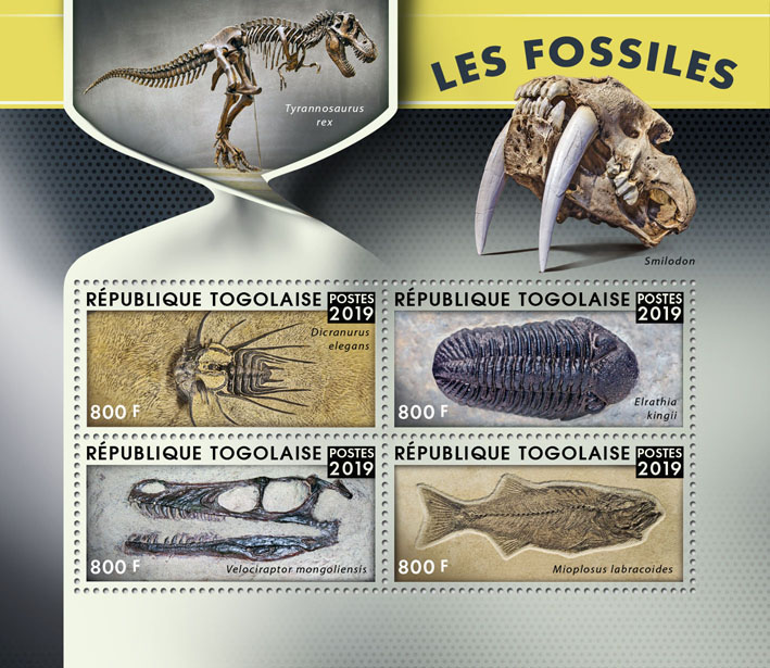 Fossils - Issue of Togo postage stamps