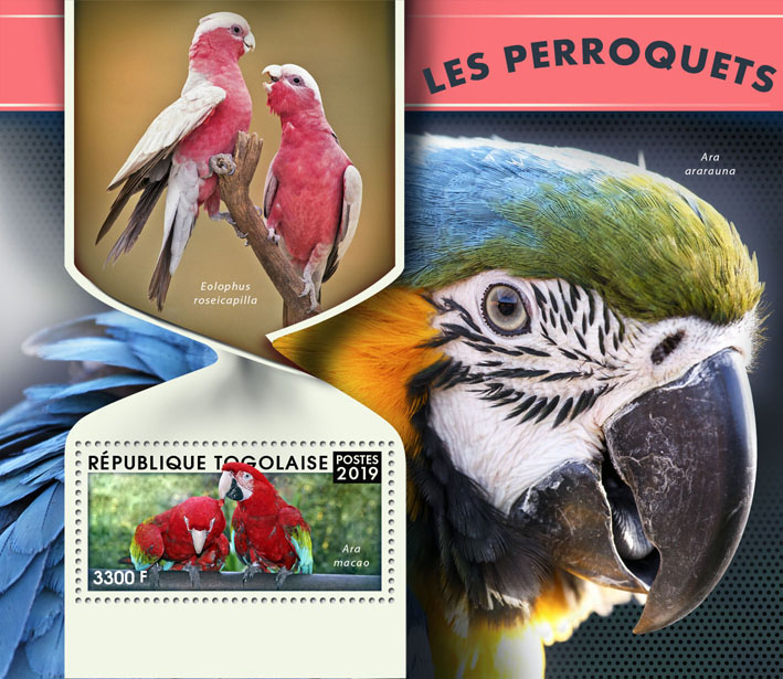 Parrots - Issue of Togo postage stamps