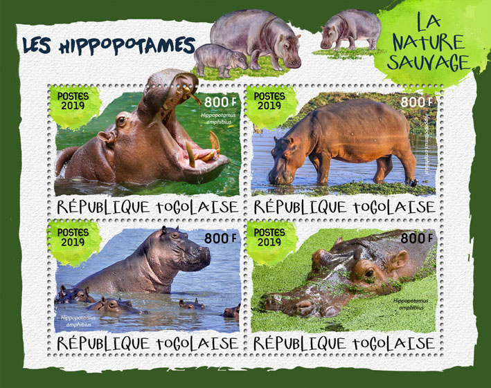 Hippopotamus - Issue of Togo postage stamps