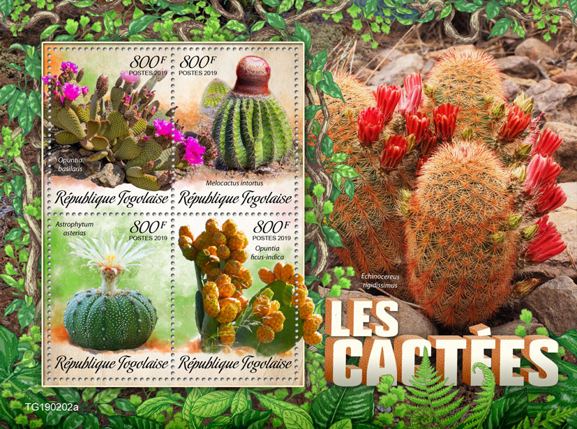 Cactus - Issue of Togo postage stamps