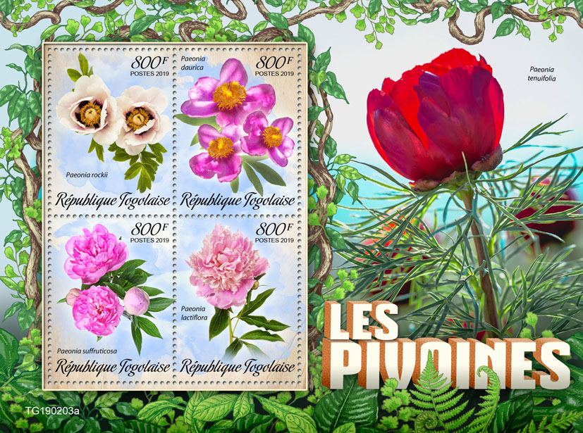 Peonies - Issue of Togo postage stamps