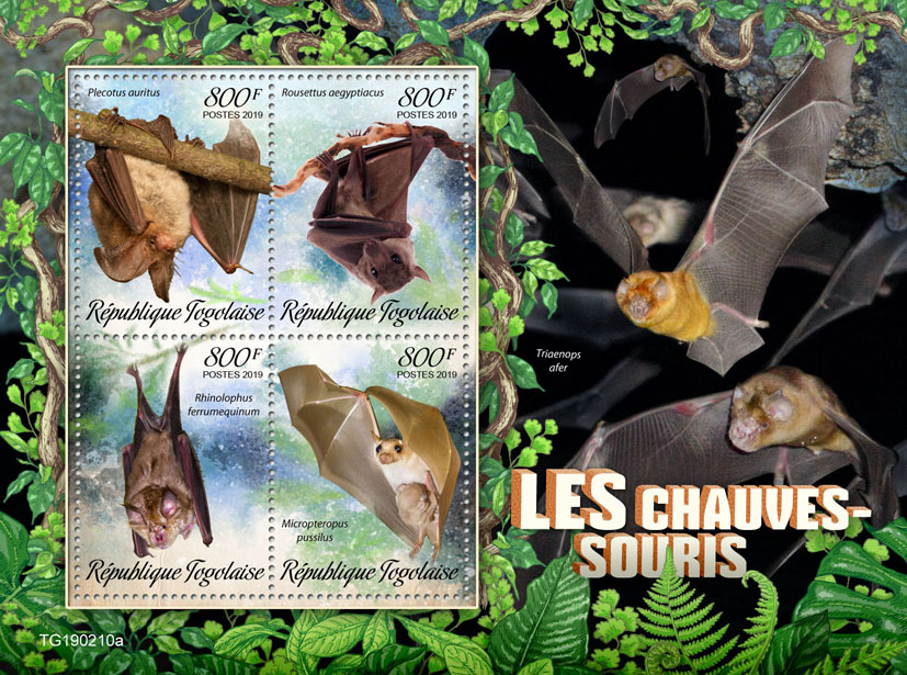 Bats - Issue of Togo postage stamps
