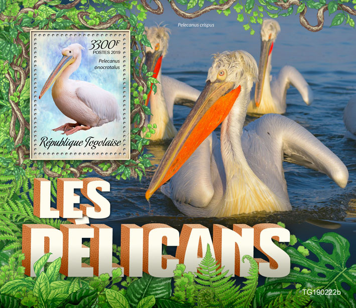 Pelicans - Issue of Togo postage stamps
